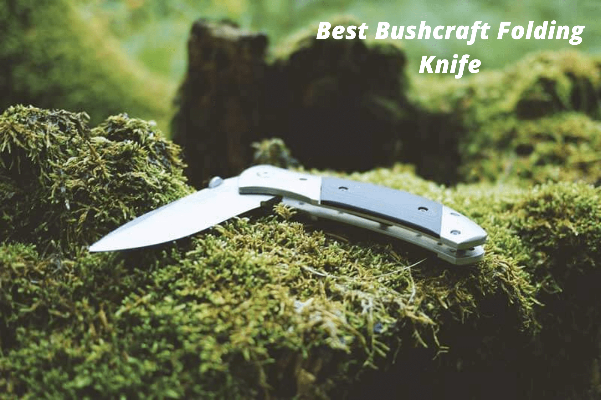 best bushraft folding knife