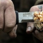 7 Best Mora knife for Bushcraft in 2021 - Morakniv Knives Reviews